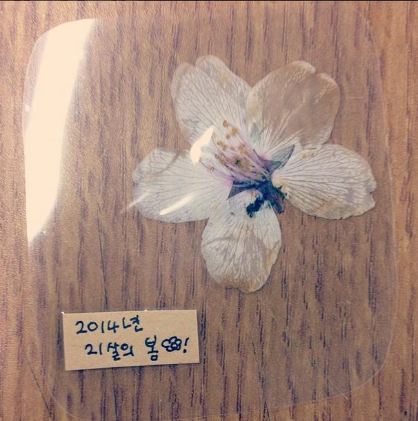 140409-minzy_classmategave thisbeautifulflower